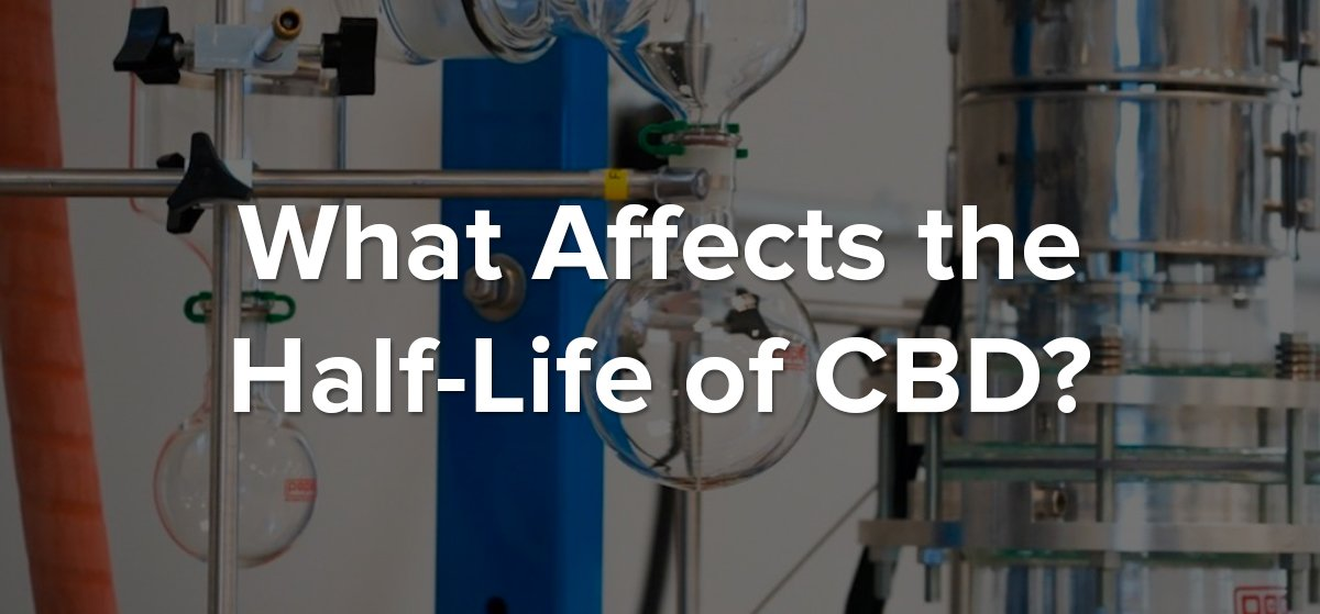 CBD Half Life